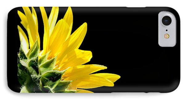 Sunflower On Black IPhone Case
