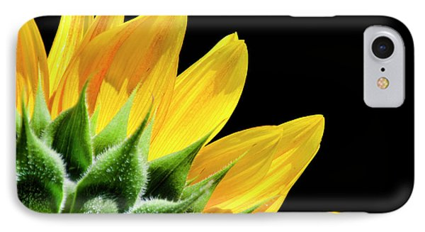 IPhone Case featuring the photograph Sunflower Petals by Christina Rollo