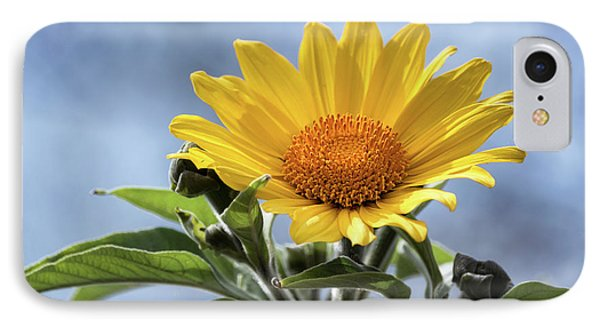 IPhone Case featuring the photograph Sunflower  by Saija Lehtonen