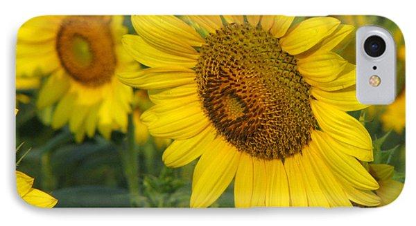 Sunflower Series Phone Case by Amanda Barcon