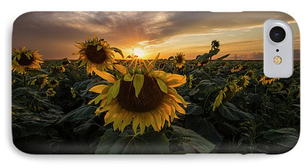 IPhone Case featuring the photograph Sunflower Sunstar  by Aaron J Groen