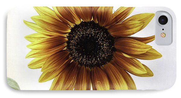 Sunflower IPhone Case by Zilpa Van der Gragt