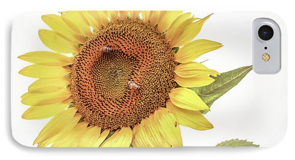 IPhone Case featuring the photograph Sunflowers 10 by Andrea Anderegg