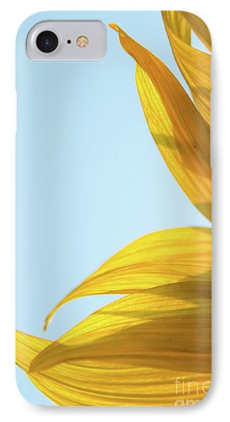 IPhone Case featuring the photograph Sunflowers 11 by Andrea Anderegg