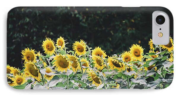 IPhone Case featuring the photograph Sunflowers 7 by Andrea Anderegg