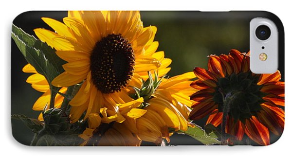 Sunflowers 8 IPhone Case