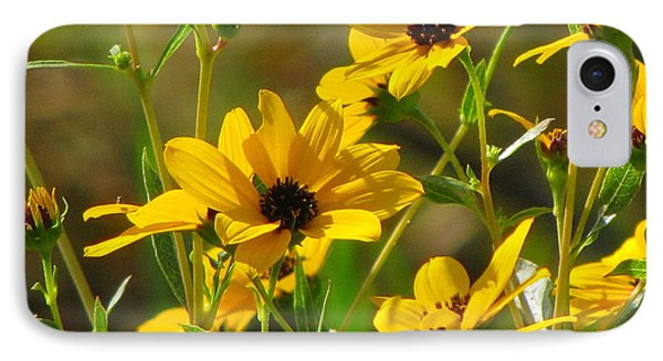 Sunflowers Along The Trail IPhone Case by Barbara Bowen