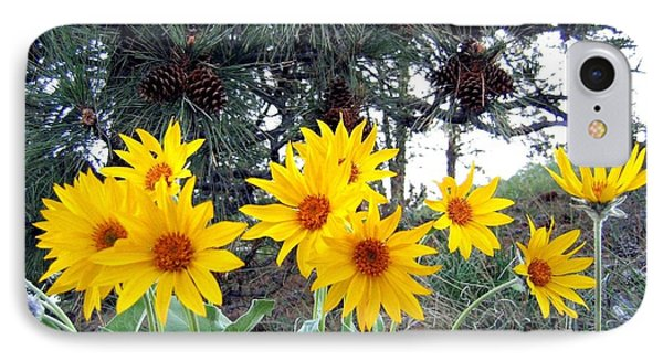 Sunflowers And Pine Cones Phone Case by Will Borden