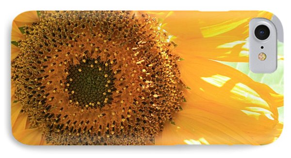 Sunflowers  IPhone Case by Marna Edwards Flavell