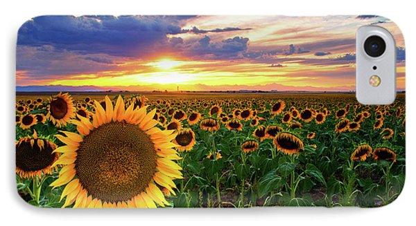 Sunflowers Of Golden Hour IPhone Case by John De Bord