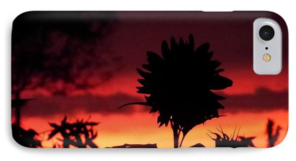 Sunflower's Sunset IPhone Case