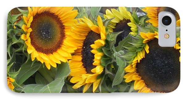 Sunflowers Two IPhone Case by Chrisann Ellis