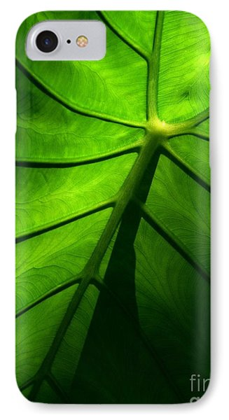 Sunglow Green Leaf IPhone Case by Patricia L Davidson