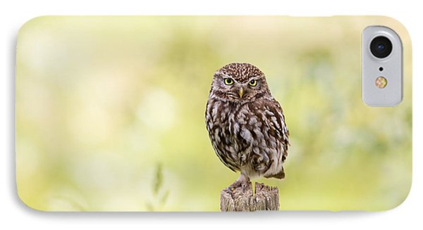 Sunken In Thoughts - Staring Little Owl IPhone Case by Roeselien Raimond