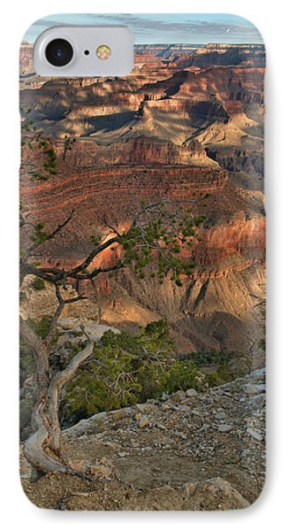 IPhone Case featuring the photograph Sunkissed Canyon by Stephen  Vecchiotti