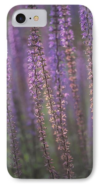 Sunlight On Lavender IPhone Case by Jacqui Boonstra