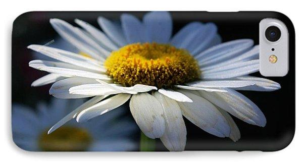 Sunlight Flower IPhone Case by John S