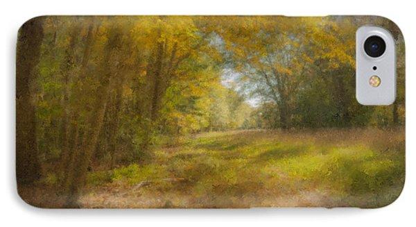 Sunlit Meadow In Borderland IPhone Case