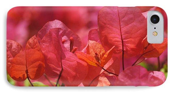 Sunlit Pink-orange Bougainvillea IPhone Case by Rona Black