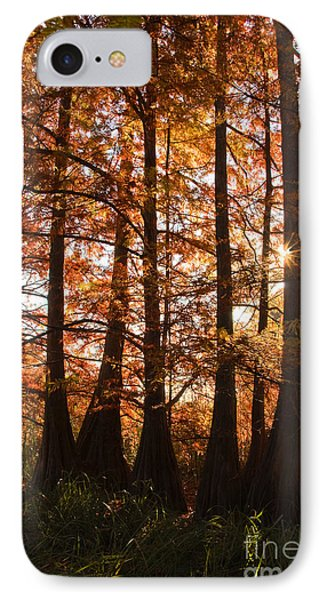 IPhone Case featuring the photograph Sunlit Trees At Lake Murray by Tamyra Ayles
