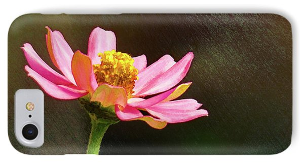 Sunlit Uplifting Beauty IPhone Case by Sue Melvin
