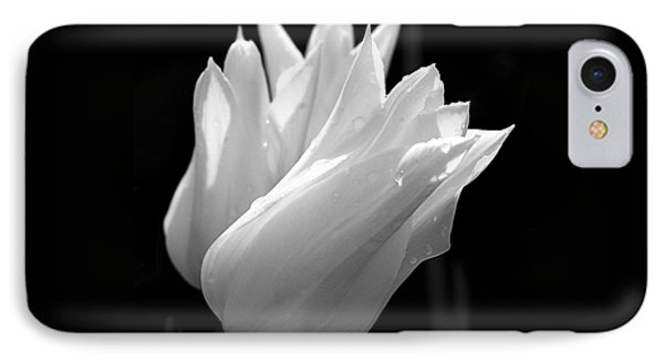 Sunlit White Tulips IPhone Case by Rona Black