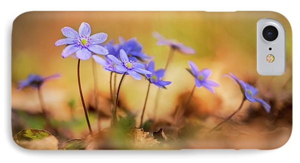 IPhone Case featuring the photograph Sunny Afternoon With Liverworts by Jaroslaw Blaminsky