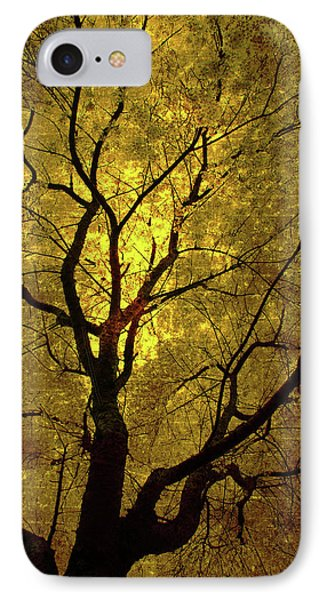 IPhone Case featuring the painting Sunny Branches by Gray  Artus