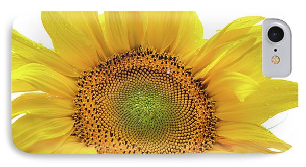 IPhone Case featuring the photograph Sunny Flower 1 by Jenny Rainbow