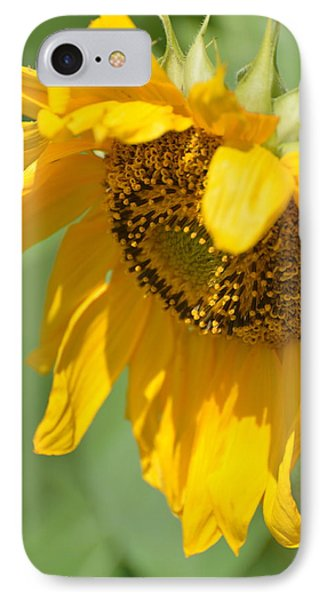 Sunny One IPhone Case by Teresa Tilley