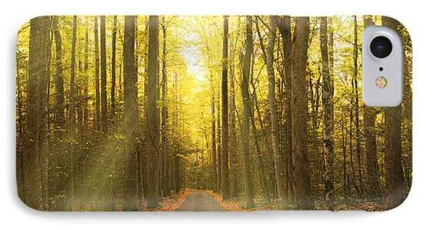 Sunny Roaring Fork Road IPhone Case