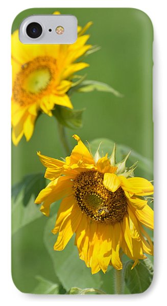 Sunny Side Up 1 IPhone Case by Teresa Tilley