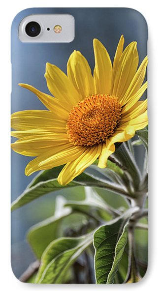 IPhone Case featuring the photograph Sunny Side Up  by Saija Lehtonen
