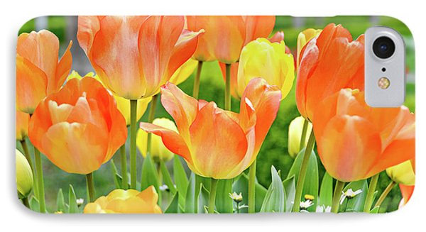 IPhone Case featuring the photograph Sunny Tulips by David Lawson