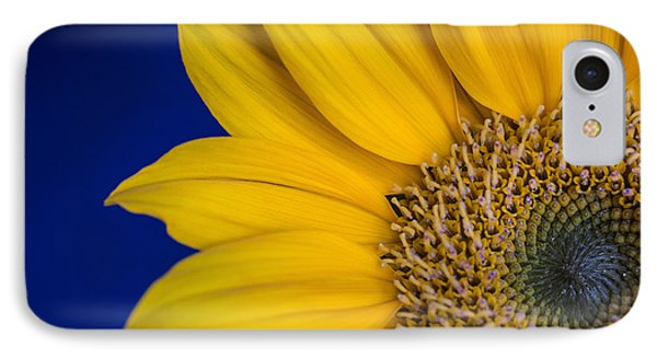IPhone Case featuring the photograph Sunnyside by Julie Andel