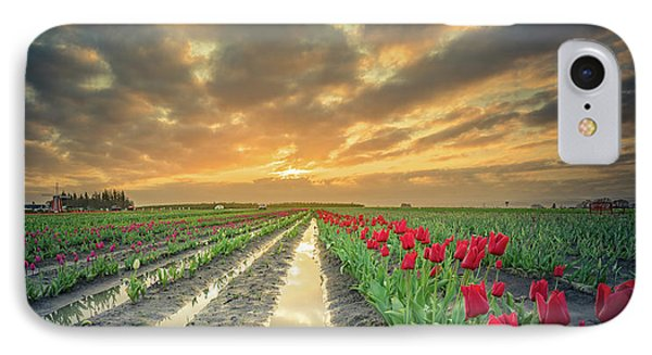 IPhone Case featuring the photograph Sunrise At Tulip Filed After A Storm by William Lee