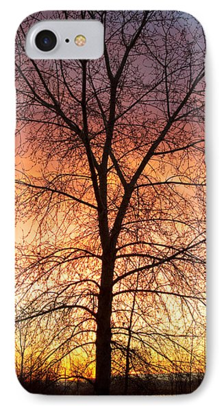 Sunrise December 16th 2010 Phone Case by James BO  Insogna