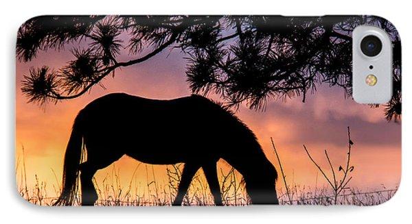 Sunrise Silhouette IPhone Case
