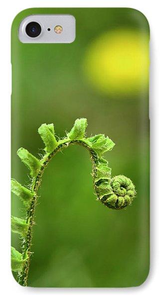 Sunrise Spiral Fern IPhone Case by Christina Rollo