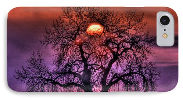 Sunrise Through The Foggy Tree Phone Case by Scott Mahon