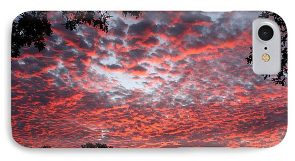 Sunrise Through The Trees IPhone Case by Sheila Brown