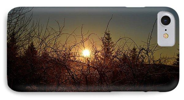 Sunrise Thru The Brush IPhone Case
