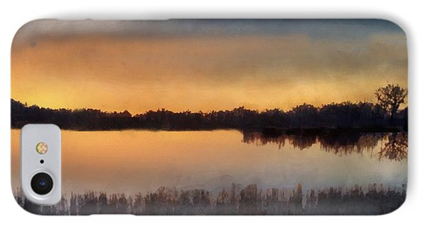 Sunrise On A Frosty Marsh Phone Case by RC deWinter