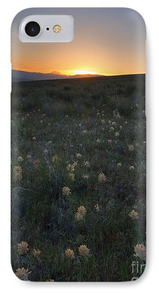 Sunset And Clover IPhone Case by Mike Dawson