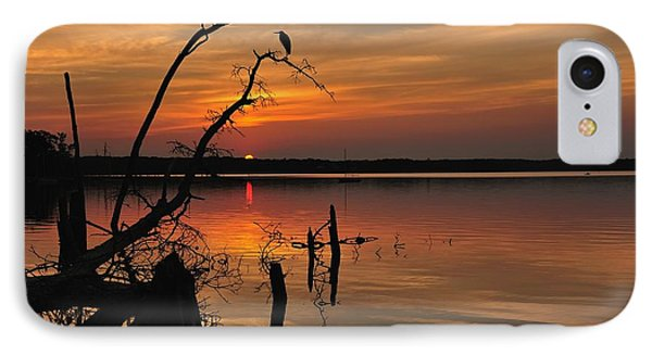 Sunset And Heron Phone Case by Angel Cher