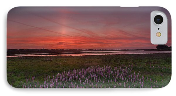Sunset And Lupine IPhone Case