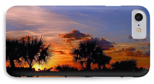 Sunset And Palm Trees IPhone Case by Tom Claud