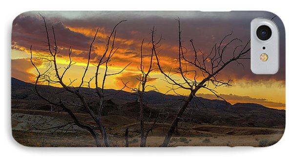 Sunset And Petrified Tree Phone Case by David Gn