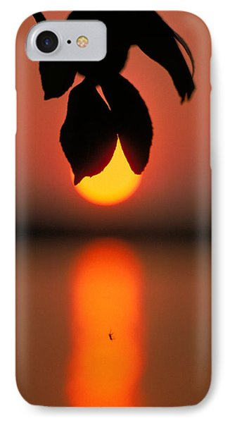 Sunset And Spider Phone Case by Thomas Firak