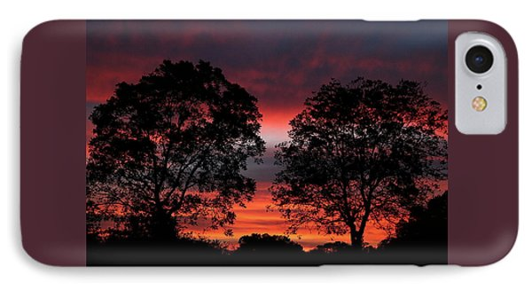 Sunset Behind Two Trees IPhone Case by Sheila Brown